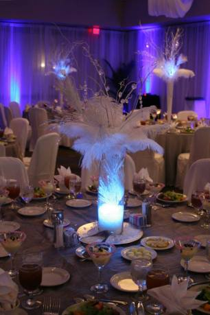 Blue/Purple LED Up Lights with White Sheer Draping