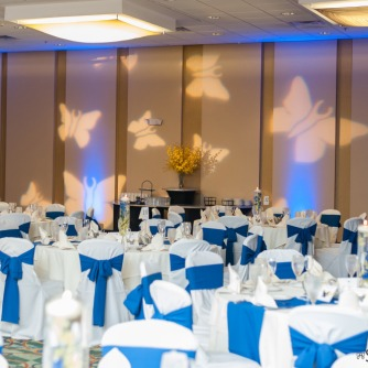 Butterfly GOBO and Blue LED Up Lights